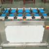 ленточный весовой дозатор FWLS12