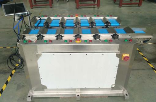 ленточный весовой дозатор FWLS12 фото